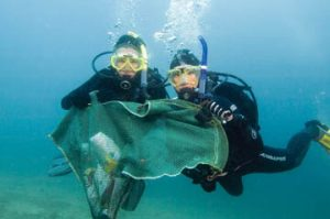 Las Americas Divers Tenerife Project AWARE